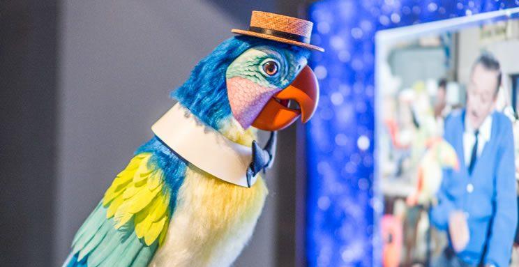 Garner Holt Animatronic Parrot